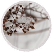 Snow And Growth Round Beach Towel