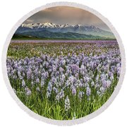 Snow And Lily Round Beach Towel