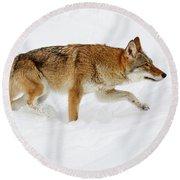 Round Beach Towel featuring the photograph Snow Bound by Steve McKinzie