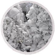 Round Beach Towel featuring the photograph Snow Coat by Alex Grichenko
