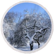 Round Beach Towel featuring the photograph Snow-covered Sunlit Apple Trees by Byron Varvarigos