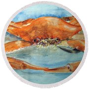 Snow Crab Is Ready Round Beach Towel by Carol Grimes