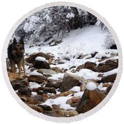Snow Cup Round Beach Towel