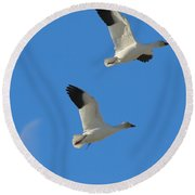 Snow Geese Moon Round Beach Towel