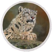 Snow Leopard On Rock Round Beach Towel by David Stribbling