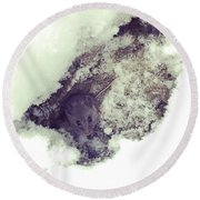 Snow Mouse Round Beach Towel