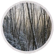 Snow On The Alders Round Beach Towel