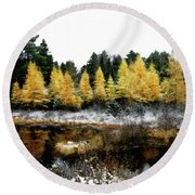 Round Beach Towel featuring the photograph Snow Paints Larch Grove by Wayne King