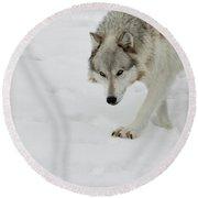 Snow Tracker Round Beach Towel