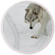 Snow Tracker Round Beach Towel