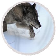 Snow Walker Round Beach Towel