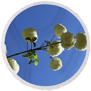 Round Beach Towel featuring the photograph Snowballs On A Stick by Skip Willits