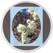 Round Beach Towel featuring the photograph Snowberry Cluster by Will Borden