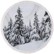 Round Beach Towel featuring the photograph Snowy-1 by Okan YILMAZ