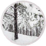 Round Beach Towel featuring the photograph Snowy-4 by Okan YILMAZ