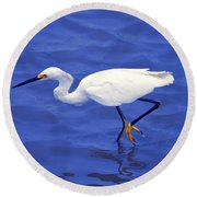 Round Beach Towel featuring the photograph Snowy Egret 1 by Bill Holkham