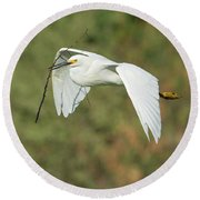 Snowy Egret 4786-091017-1cr Round Beach Towel