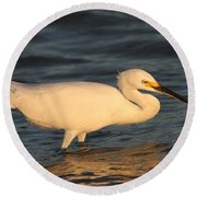 Round Beach Towel featuring the photograph Snowy Egret By Sunset by Christiane Schulze Art And Photography