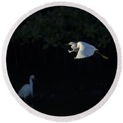 Snowy Egret Gliding In The Morning Light Round Beach Towel