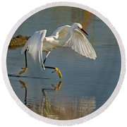 Snowy Egret On The Move Round Beach Towel