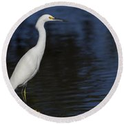 Snowy Egret Perched On A Rock Round Beach Towel