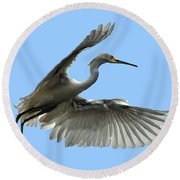 Snowy Egret Reflection In Lake Round Beach Towel