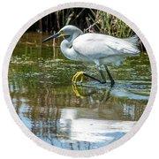 Snowy Egret Reflection Round Beach Towel
