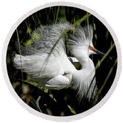 Round Beach Towel featuring the photograph Snowy Egret by Steven Sparks