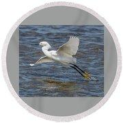 Snowy Egret Taking Off Round Beach Towel