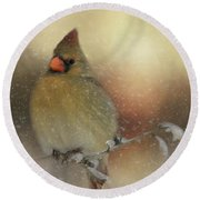 Snowy Female Cardinal Round Beach Towel by Lana Trussell