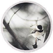 Round Beach Towel featuring the photograph Snowy Landing by Shane Holsclaw