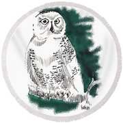 Round Beach Towel featuring the drawing Snowy Owl II by Seth Weaver