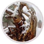 Snowy Roots 2 Round Beach Towel