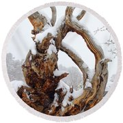 Snowy Roots Round Beach Towel