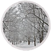 Round Beach Towel featuring the photograph Snowy Treeline by Aimee L Maher Photography and Art Visit ALMGallerydotcom
