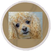 Snuggles Round Beach Towel by Steven Richardson