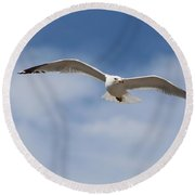 Soaring Free Round Beach Towel