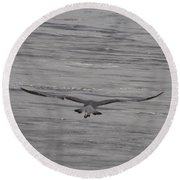 Round Beach Towel featuring the photograph Soaring Gull by  Newwwman
