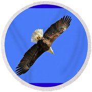 Soaring Into The Blue  Round Beach Towel