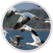 Soaring On The Wing Round Beach Towel