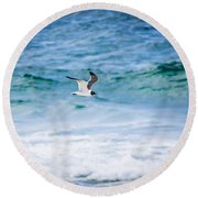 Soaring Over The Ocean Round Beach Towel by Shelby Young