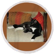 Socks The Cat King Round Beach Towel by Fred Jinkins