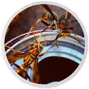Soda Pop Bandits, Two Wasps On A Pop Can  Round Beach Towel