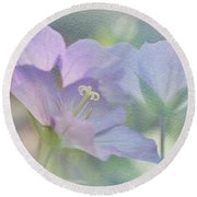 Round Beach Towel featuring the photograph Soft Blue by Ann Lauwers
