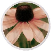 Soft Delicate Pink Daisy Round Beach Towel by Judy Palkimas