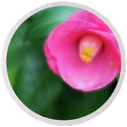 Soft Focus Flower 1 Round Beach Towel