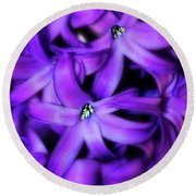 Soft Hyacinth Round Beach Towel by Judi Bagwell
