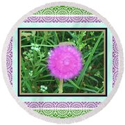 Soft Pink Thistle Round Beach Towel by Shirley Moravec