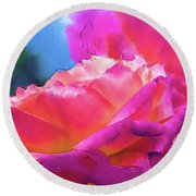 Soft Rose Bloom In Red And Purple Round Beach Towel