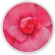 Soft Touch Camellia  Round Beach Towel by Denis Lemay